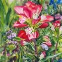 Lambeth, Mary Paint and Phlox Watercolor30x22.5