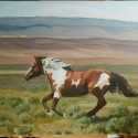 Lange, Chris Wild and Free Oil 16x20