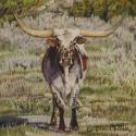 Nistler, Eileen Rawhide Colored Pencil 6x6