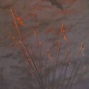 Golden Spur Award Artists Choice $250 Judy McElroy Crane Sunrise Acrylic 24 x 12 $2,400.00