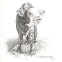 McElroy Judy Got Milk Pencil 9 x 8.5 $1,200.00