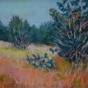 Napper, Steven Summer Grass Pastel 11x14 $800.