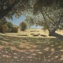 Postmus Barron Fall Pasture Oil 12 x 16 $1,800.00