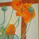Stevenson Marvin Orange Poppies WC 10 x 14 $950.00