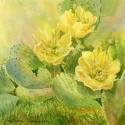 Turner Cecy Prickly Delight WC 11 x 15 $500.00