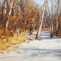 Sarka, Drew Early Snow -Jewel Oil 24x36
