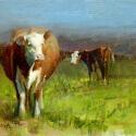 Conrad Bonnie Bovine Belle Oil 9 x 12 $1,200.00