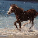 Edwards, Barbara Free Spirit Oil 12x16 $1,400.