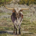 Nistler Eileen Raw Hide Colored Pencil 6 x 6 $500.00