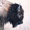 Rymer Tamara Buffalo Oil 18 x 18 $1,400.00